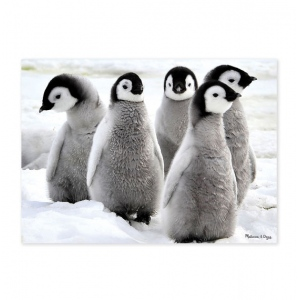 Penquin Party 30-Piece Cardboard Jigsaw Puzzle