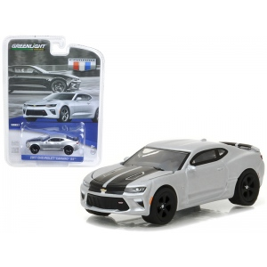 2017 Chevrolet Camaro SS Silver Ice Metallic with Black Rally Stripes 1/64 Diecast Model Car by Greenlight