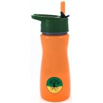 "Eyla's ""Frost"" Kids' Stainless Steel Insulated Bottle with Straw: Orange,  Top 13oz/400ml"