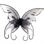 Black Butterfly Wings: Black, One Size, Everyday, Female, Adult