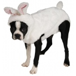 Bunny Pet Costume - Small