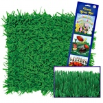Green Grass Tissue Mats (2): Green, Birthday