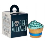 Birthday Express Boys Only Bash Cupcake Boxes Blue/Grey