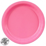 Candy Pink (Hot Pink) Dinner Plates (24): Birthday