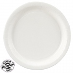 Bright White (White) Dinner Plates (24): Birthday