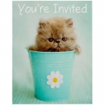 Birthday Express rachaelhale Glamour Cats Invitations