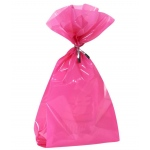 Creative Converting Hot Pink Treat Bags Pink