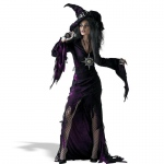 Disguise Sorceress Young Adult Costume 7-9