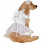 Angel Pet Costume: White, Large, Everyday, Unisex