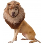 Lion Pet Costume - Small