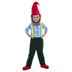 Gnome Boy Child Costume: Multi-colored, Small, Everyday, Male, Child