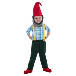 Gnome Boy Child Costume: Multi-colored, Medium, Everyday, Male, Child