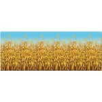 Cornstalk Background: Multi-colored, Birthday
