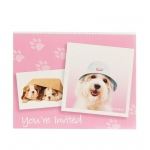 Birthday Express rachaelhale Glamour Dogs Invitations
