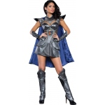A Knight to Remember Adult Costume S: Small, Everyday, Adult