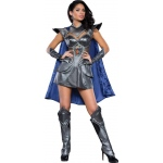A Knight to Remember Adult Costume M: Medium, Everyday, Adult