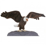 Hansa® Eagle Large