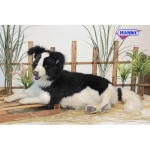 Hansa® Border Collie Laying