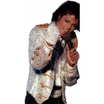 Rubie's Costumes Michael Jackson Adult Sequin Glove One-Size
