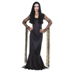 Addams Family Morticia Adult Costume: SMALL, Everyday, Adult