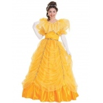 Beauty Adult Costume - Small