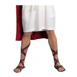 California Costumes Brown Roman Sandal Adult One-Size
