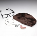 Austin Powers Deluxe Accessory Kit (Adult):One Size