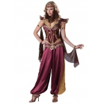Desert Jewel Adult Costume:X-Large