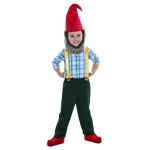 Gnome Boy Toddler Costume:Toddler (3T-4T)