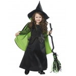 Wicked Witch of Oz Toddler Costume 3-4T: 3-4T, Everyday, Child