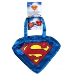 Imagine Supergirl Purse and Hairclips One Size