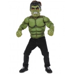 Imagine Hulk Deluxe Costume One Size
