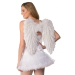 Rubie's Costumes Feather Angel Wings