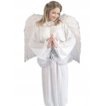 Forum Novelties White 36 Feather Wings