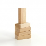 Guidecraft 5pc Hardwood Unit Block Set