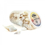 Hygloss Seashells: 5 oz, White Mix